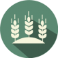 Piedmont-Grown-Agriculture